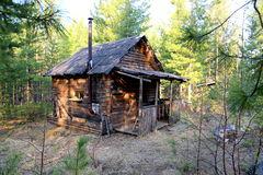 Forest shelter cabin for hunters in the Siberian taiga. House for temporary accommodation and rest in the deep thicket of pine trees, which is used by hunters Royalty Free Stock Image