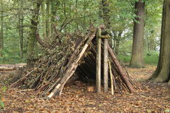 Forest Shelter. Royalty Free Stock Photo