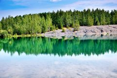 The forest on the shore of lake Royalty Free Stock Images
