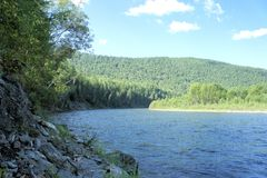 Forest Siberian mountain clean river. Siberia. Stock Photo