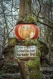 Forest Sign Tree Grunge Germany royalty free stock photos
