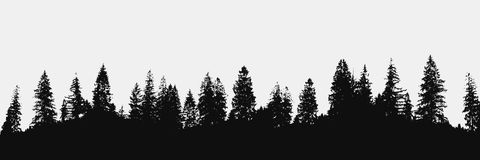 Forest silhouette backdrop Stock Images