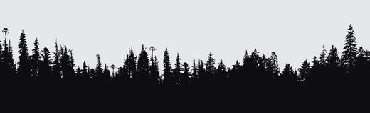 Forest silhouette background. Royalty Free Stock Photo