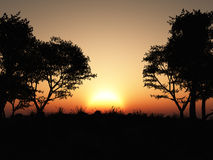 Forest Silhouette Sunset Royalty Free Stock Photography