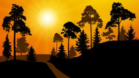 Forest silhouette of a sunset. Park road trees. Vector illustration. Forest silhouette of a sunset. Park road trees. Vector illustration Royalty Free Stock Images