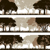 Forest silhouettes lanscapes Stock Photo
