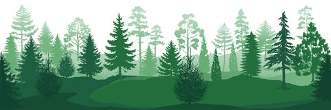 Free Forest Silhouettes. Wild Nature Wood Backgrounds, Green Pine Trees Firs And Spruces Landscape. Vector Park Backdrop Royalty Free Stock Image - 150041686