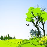 Forest sketch poster. Forest border deciduous foliage tree with green grass meadow background eco poster sketch vector illustration Stock Photography