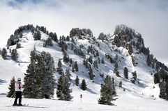 Forest skiing country in Mayrhofen-Hippach stock images