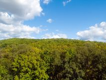 Forest and sky landscape. Fall forest and blue sky with white clouds landscape Royalty Free Stock Images