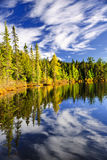Forest and sky reflecting in lake Royalty Free Stock Images