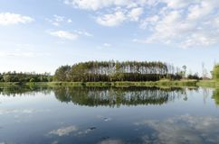 Forest and sky reflection in the lake.  Royalty Free Stock Photo