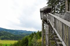 Forest Skywalk in Wipfelwanderweg Rachau. Royalty Free Stock Photography