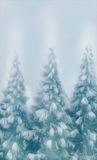 Forest snow covered trees  on  a winter snow background stationery christmas card type copy ready Stock Photo