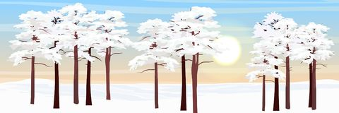 Forest in the snow. Pines and glade royalty free illustration