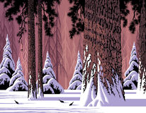 Forest Snow Scene Royalty Free Stock Image