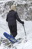 Forest snowshoeing. Image of a woman with snowshoeing in the middle of a snowy forest royalty free stock photography
