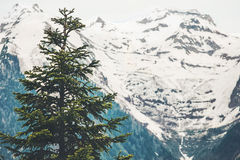 Forest snowy Mountains moody Landscape Royalty Free Stock Image