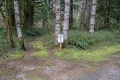 Forest Speed Limit fotos de archivo libres de regalías