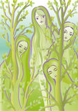 Forest spirits Dryads. Four girls dryads among the trees in the forest Royalty Free Stock Image