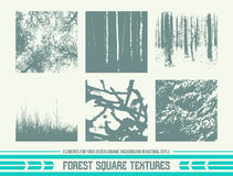 Forest square textures Royalty Free Stock Photography