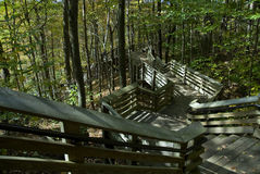 Forest Stairs. An extremely long stairway winds its way down a mountain side on its way to the river Royalty Free Stock Photos