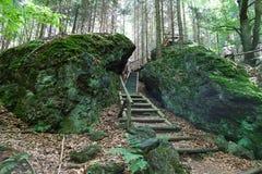 Forest Stairs Royaltyfria Bilder