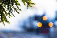 Forest Steam Train Stock Photography