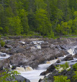 Forest, Stone, and Rushing Water Royalty Free Stock Image