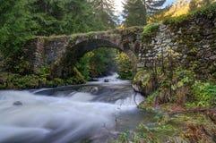 Forest story - canyon of falls near Smolyan, Bulgaria Royalty Free Stock Photo