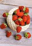 Forest Strawberries Royalty Free Stock Image