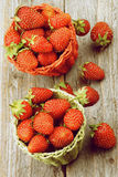 Forest Strawberries maduro fotos de stock royalty free
