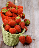 Forest Strawberries Royalty Free Stock Images