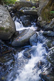 Forest Stream. A forest stream gurgles though the rocks Stock Photography