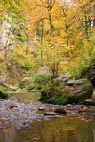 Forest stream. Idyllic forest stream in autumn colors Royalty Free Stock Photo