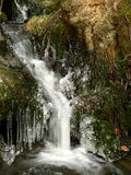 Forest stream. A forest stream and icicles Stock Images