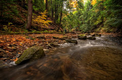 Forest Stream In Autumn. Sulpher Springs Creek in Ohio during peak fall colors. This small scenic stream looks it's best with peak autumn colors in the trees stock photos