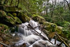 Forest Stream Cascades through Rocks Royalty Free Stock Photos