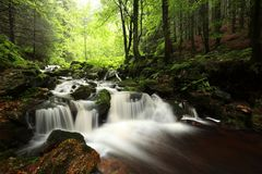 Free Forest Stream Flowing Down From The Mountain Slope A Brook Over Stones Covered With Moss Among Beech Trees Of Pradziad Is Highest Royalty Free Stock Photos - 139564548