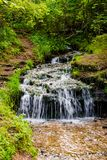 Forest stream `Gremuchiy ruchey` - Natural landmark stock image