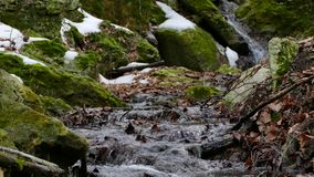 Forest Stream im Winter stock video footage