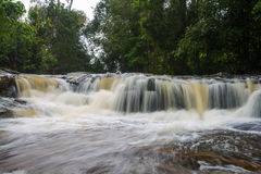 Forest stream Kradueng national park Royalty Free Stock Photography