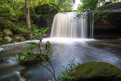 Forest stream Kradueng national park Royalty Free Stock Photo