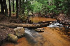 Forest Stream near Marquette, Michigan. Stock Images