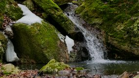 Forest Stream nell'inverno stock footage