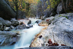 Forest Stream Over White Rocks Royalty Free Stock Photography