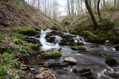 Forest stream with rocks in Ardennes, Belgium. NSmall creek with moss Royalty Free Stock Image