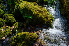 Forest stream and rocks. Forest stream and moss on rocks in Slovak Karst mountains, Slovakia Royalty Free Stock Photography