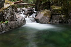 Forest stream and rocky banks. Rocky banks along pool of water fed by forest stream on sunny day Stock Image