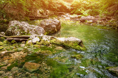 Forest stream running over mossy rocks. The mountain river in Crimea Stock Images